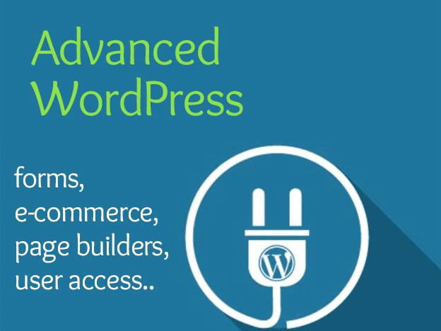 Advanced WordPress course image